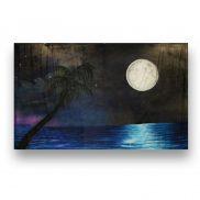 Backdrop Moonlight Sky on the Beach