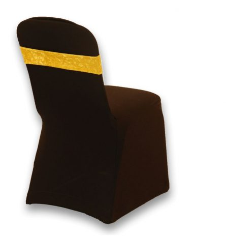 Crushed Velvet Chair Band Rental