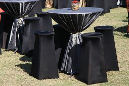 Jacksonville, FL Stool Decor Rentals