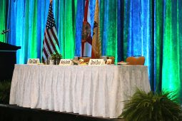 Jacksonville, FL Table Linens Table Skirt Rental