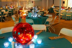 Jacksonville, FL Planters and Vases Rental
