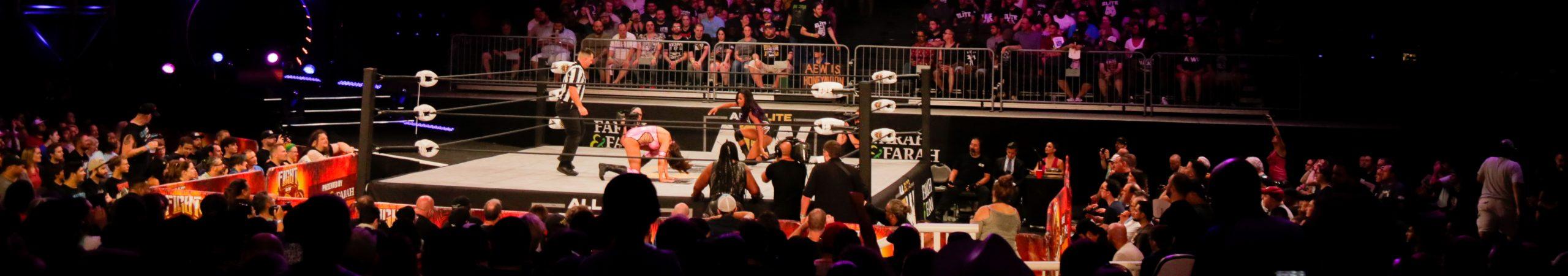 All Elite Wrestling – Fight For The Fallen